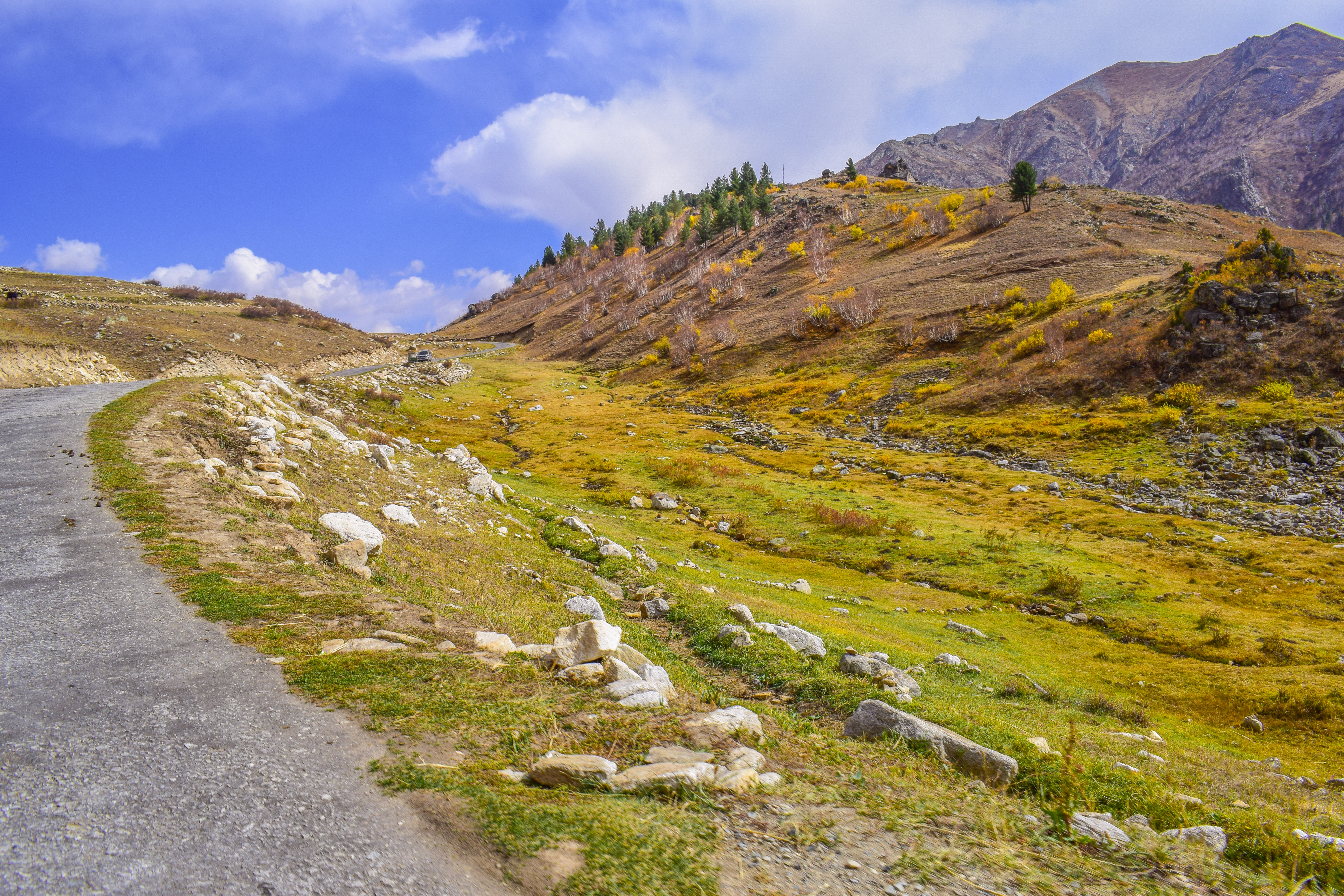 Things to explore in Pakistan - Deosai National Park