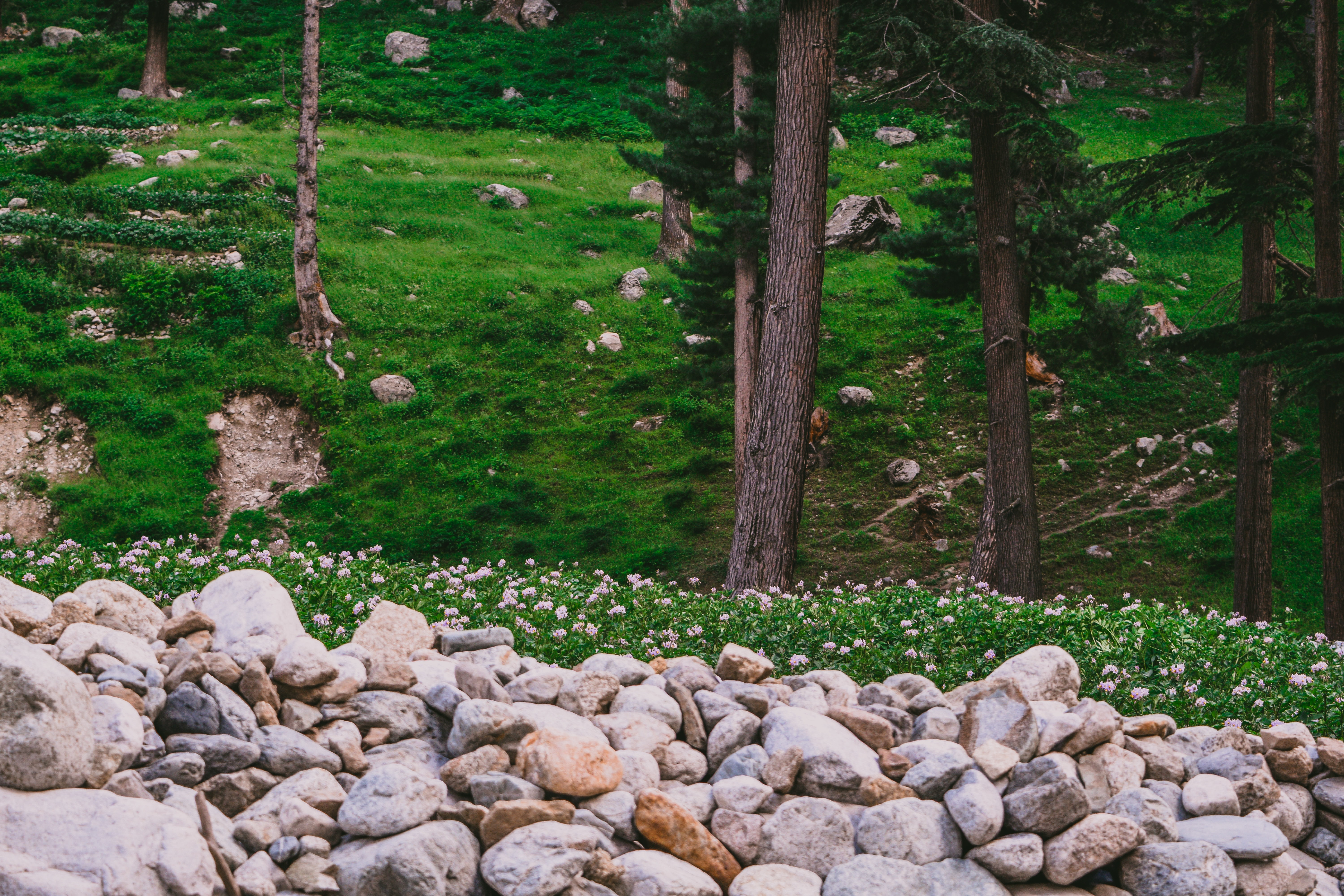 Things to explore in Pakistan - Kalash valley, Chitral