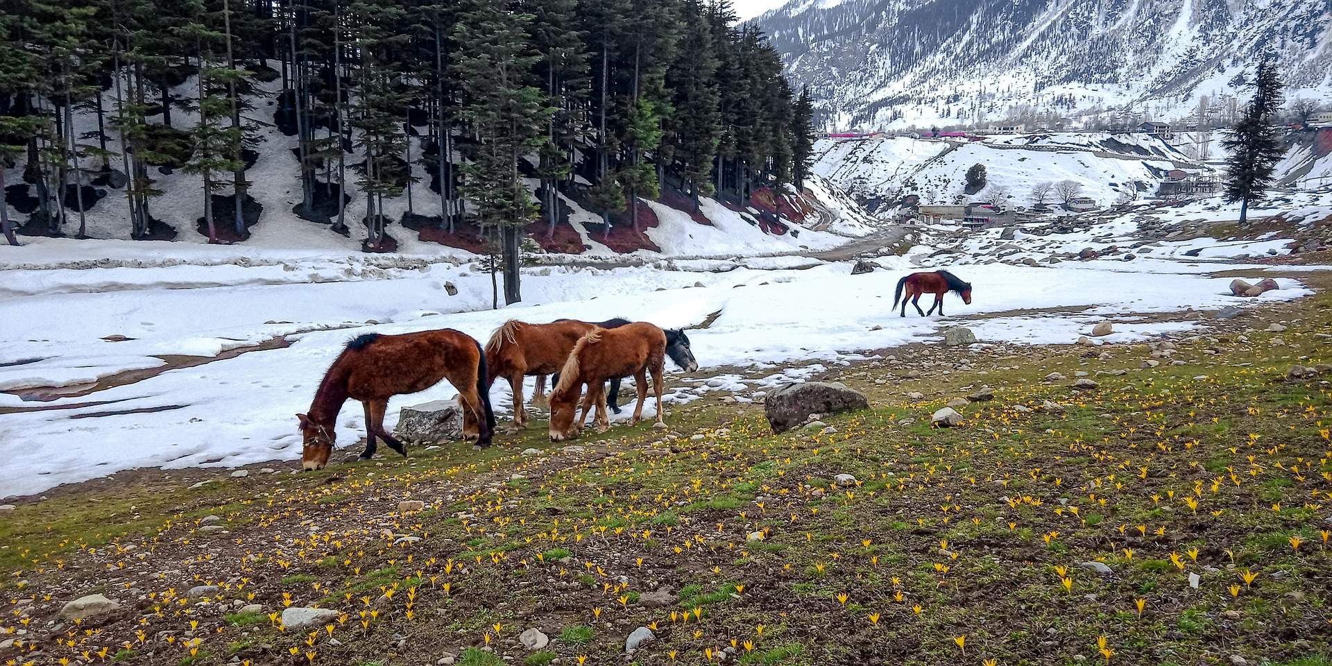 Things to explore in Pakistan - Madyan, Swat