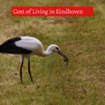 Cost of Living in Eindhoven-UTTD